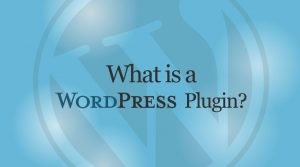pengertian apa itu plugin wordpress